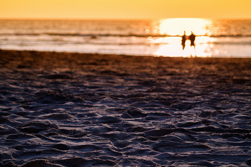 abstract-dramatic-couples-set