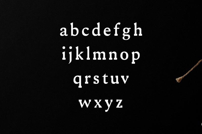 ireene-serif-3-font-family-pack