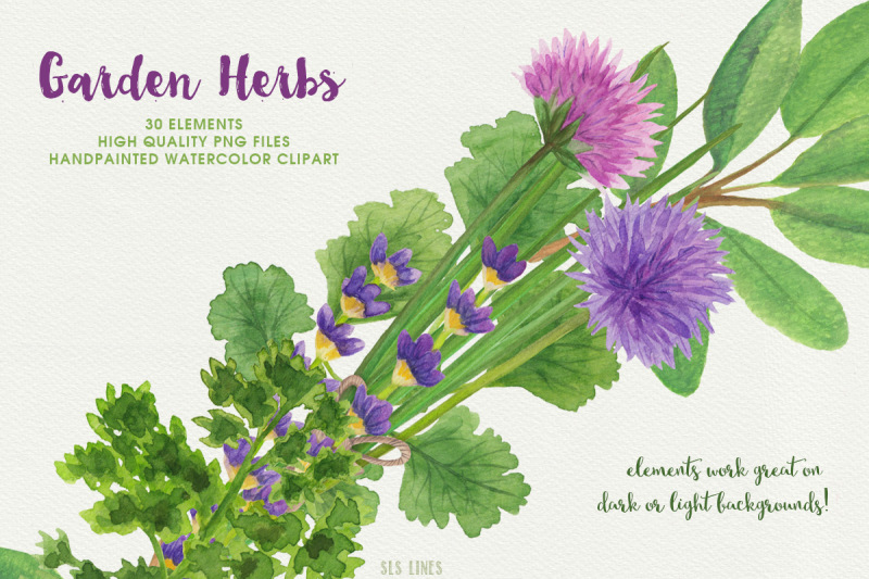 herb-garden-watercolor-illustrations