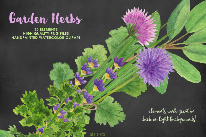 herb-garden-watercolor-illustrations