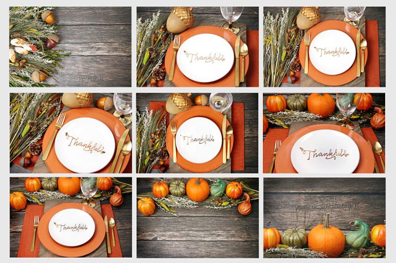 thanksgiving-bundle-of-28-photos