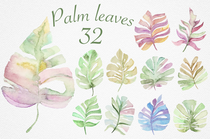 palm-leaves-collection