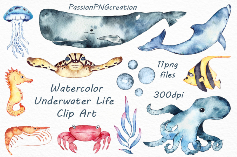 watercolor-underwater-life-clipart