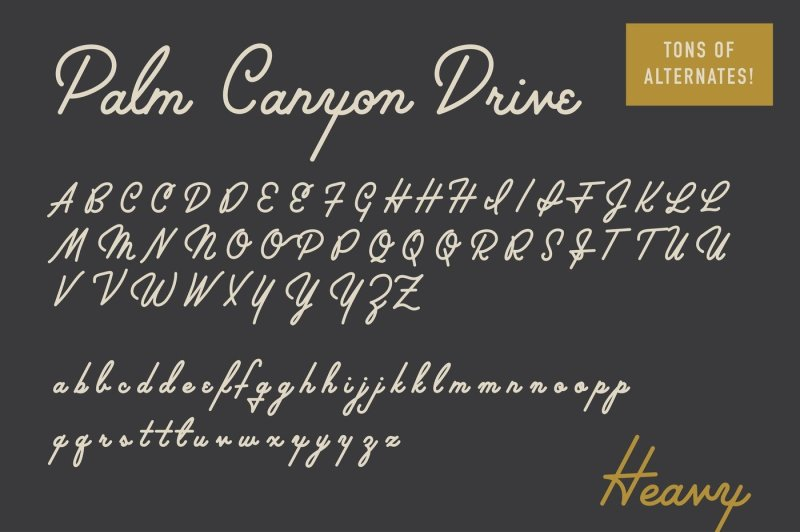 palm-canyon-drive-deluxe-edition