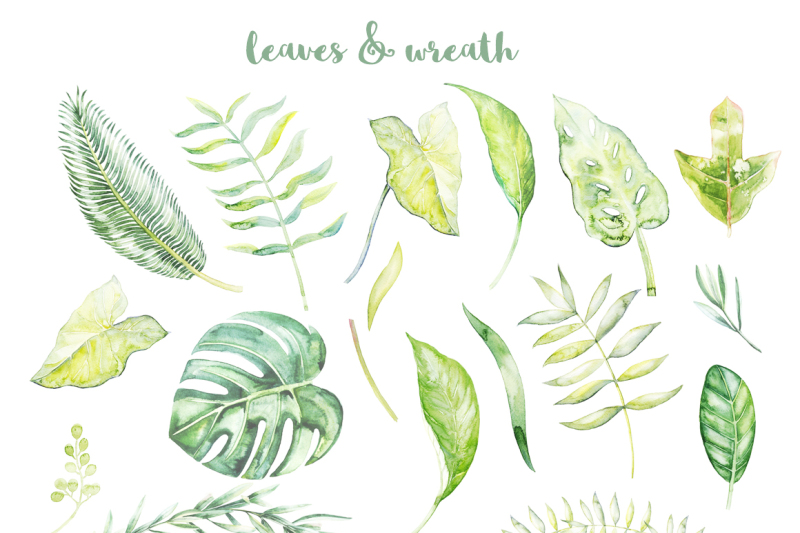 watercolor-tropical-plants-30-percent-off