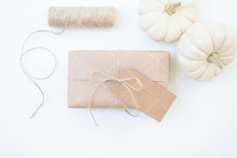 white-pumpkin-bundle
