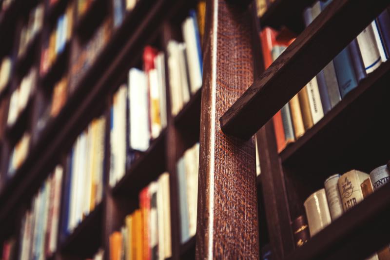 library-bookshelf-wooden-ladder