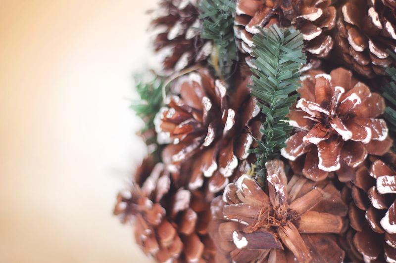 christmas-pine-cones