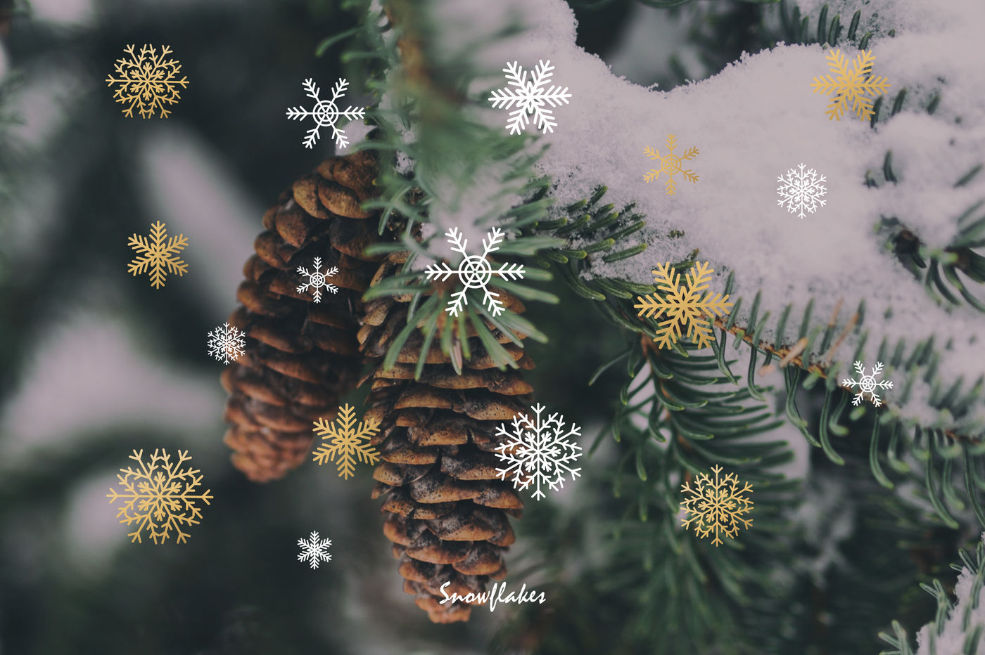 Christmas Set By Letters Shmetters Thehungryjpeg Com