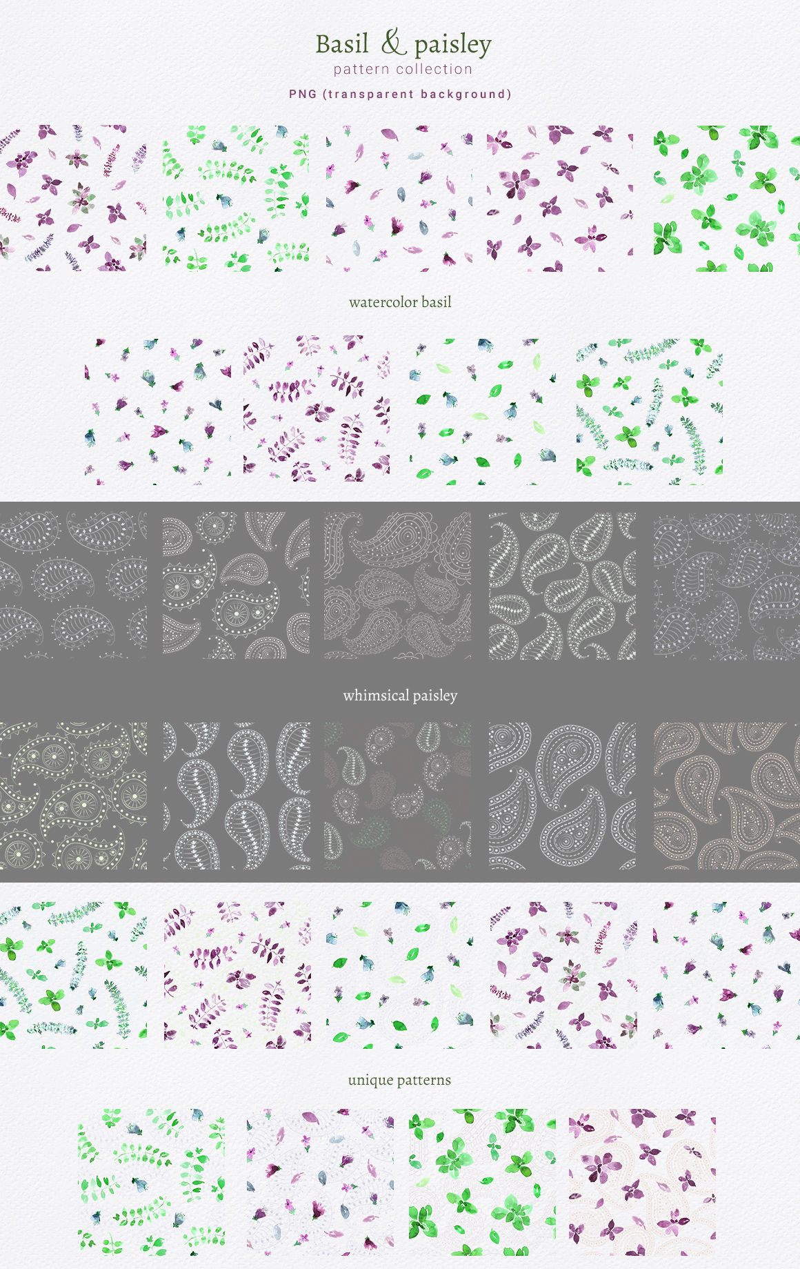 Basil Paisley Pattern Collection By Zzorna Art Thehungryjpeg Com