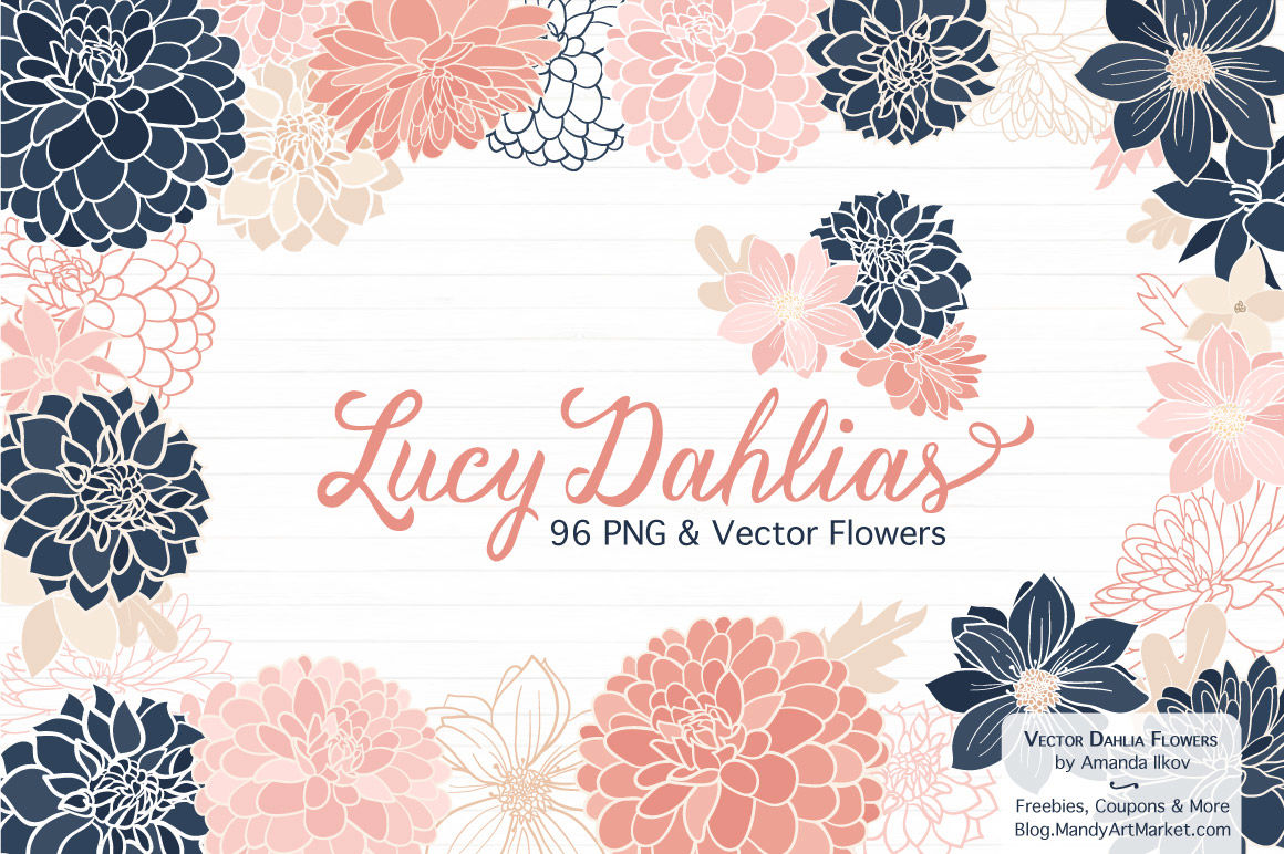 Lucy Floral Dahlias Clipart In Navy Blush By Amanda Ilkov