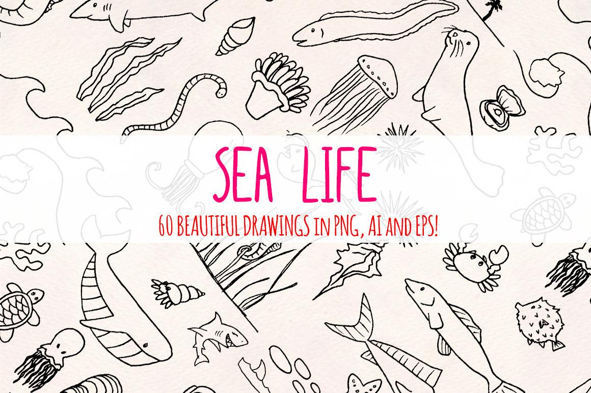 Sea Life 60 Ocean Illustrations Vector Graphics Bundle By