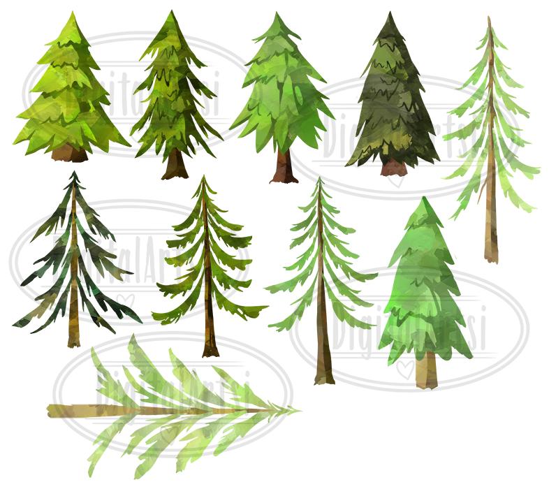 Watercolor Pine Trees Clipart By Digitalartsi Thehungryjpeg Com