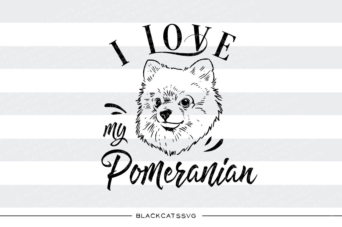 I Love My Pomeranian Svg File By Blackcatssvg Thehungryjpeg Com
