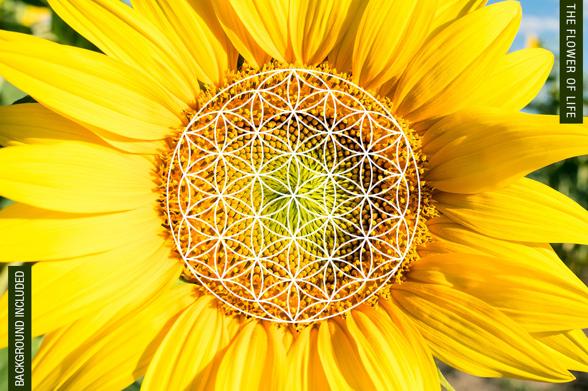 100 Sacred Geometry Symbols By Pixaroma | TheHungryJPEG com