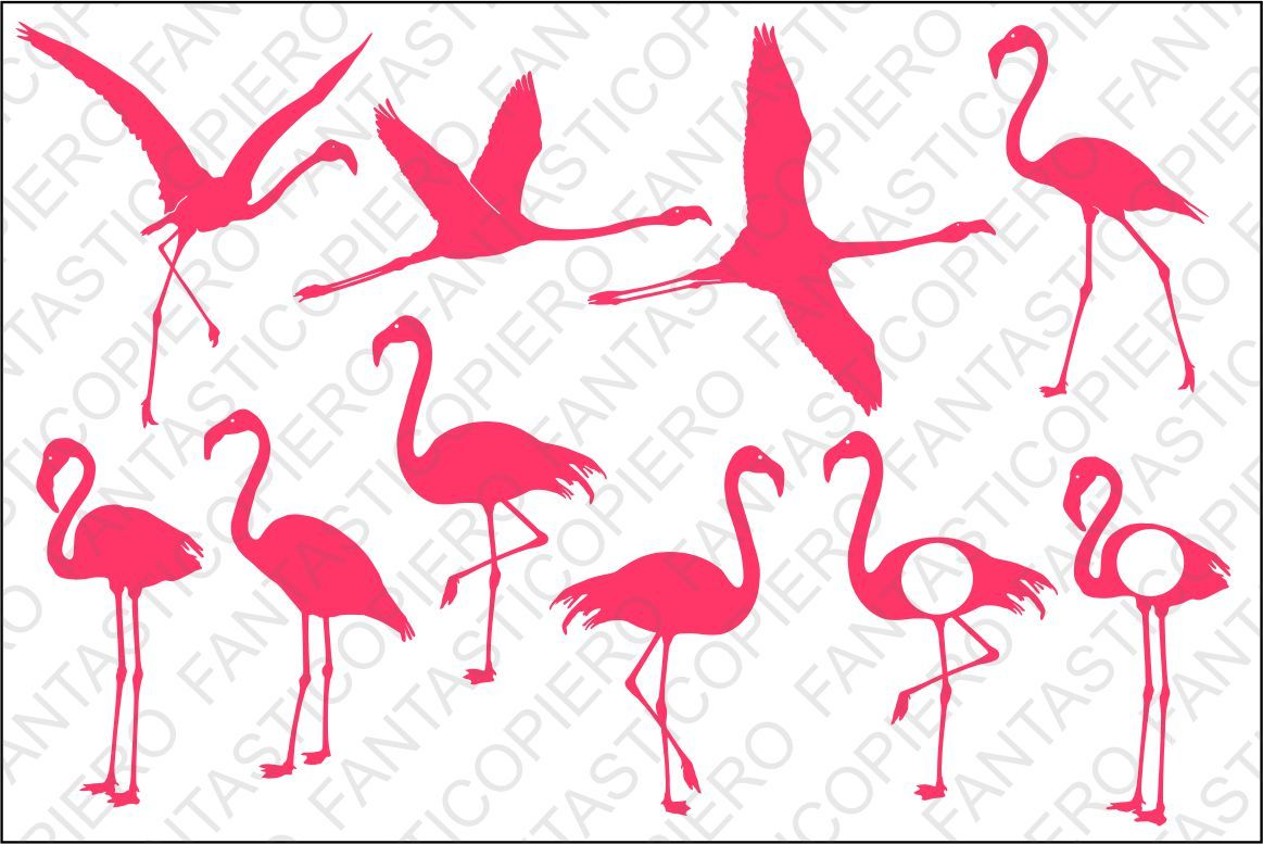 Flamingo Svg Files For Silhouette Cameo And Cricut By