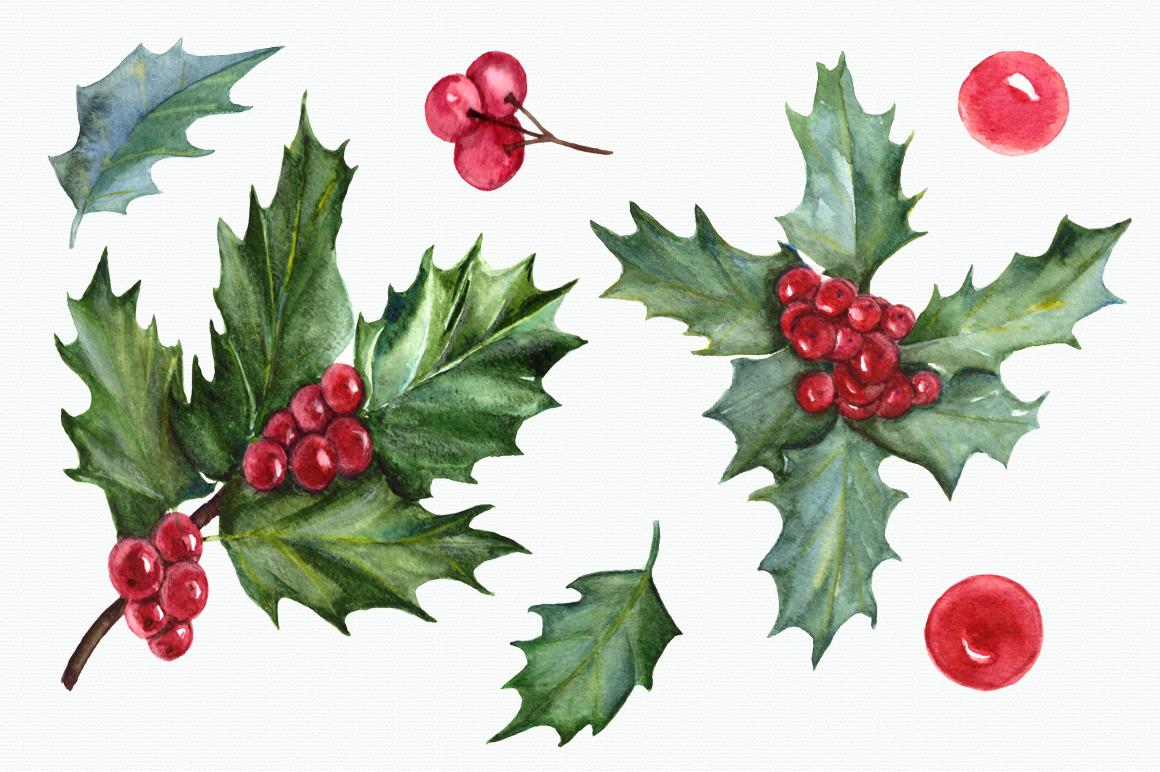 Watercolor Holly Clip Art Set By Tatibordiu Watercolor
