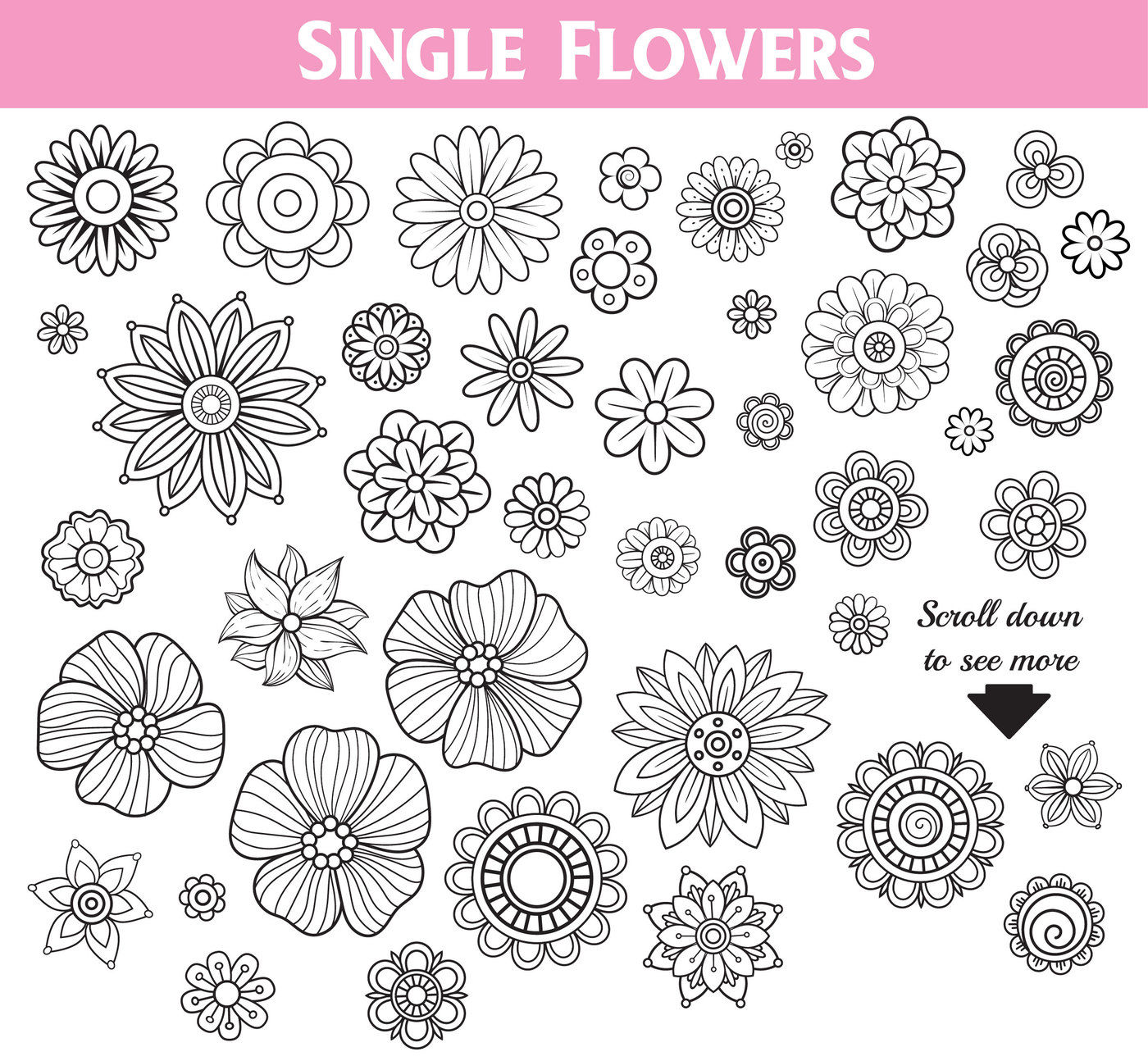 Floral Doodles Collection By Elionorka Thehungryjpeg Com