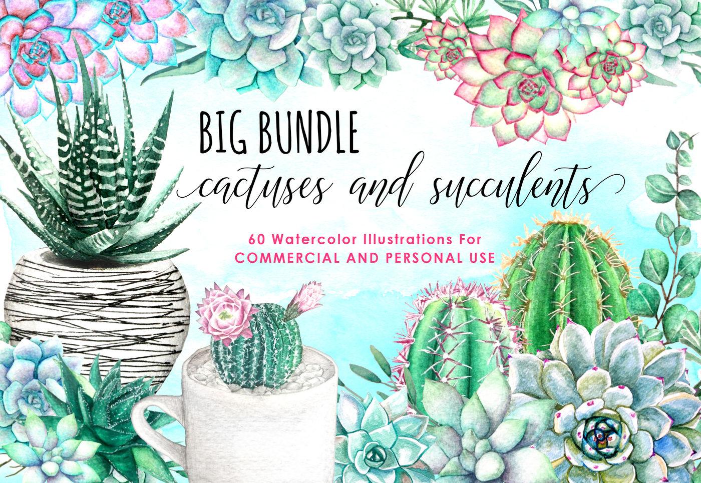Watercolor Succulents And Cactus Watercolor Floral Watercolor