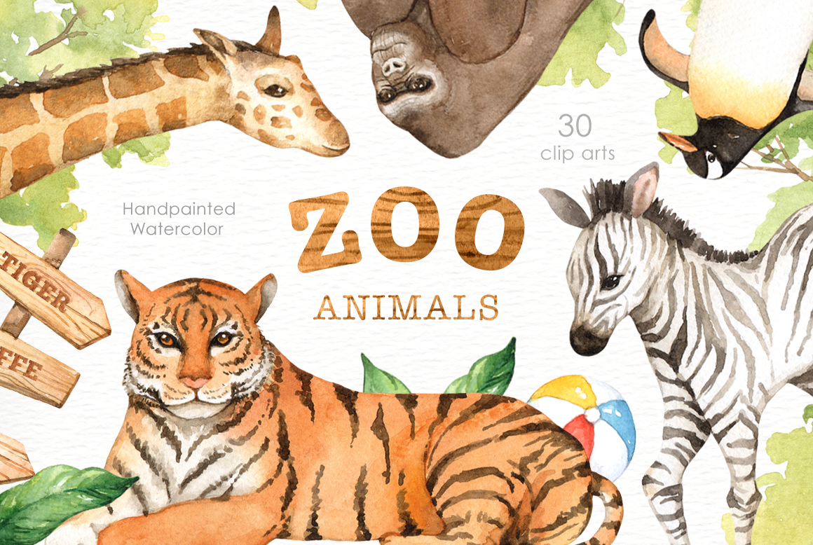 Zoo Animals Watercolor clipart By everysunsun ...