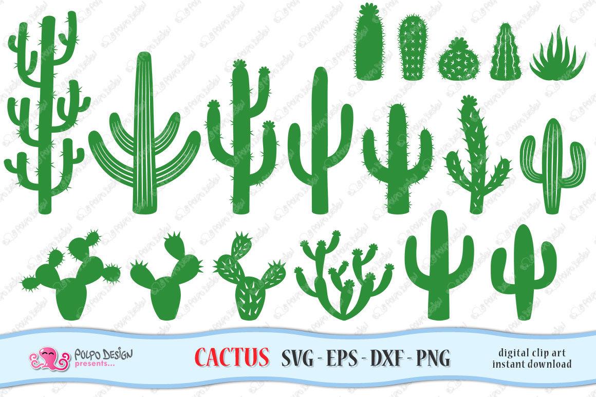Cactus Svg By Polpo Design Thehungryjpeg Com