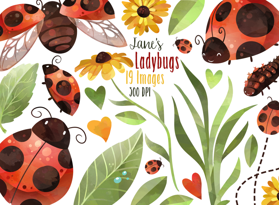 Watercolor Ladybugs Clipart By Digitalartsi Thehungryjpeg Com