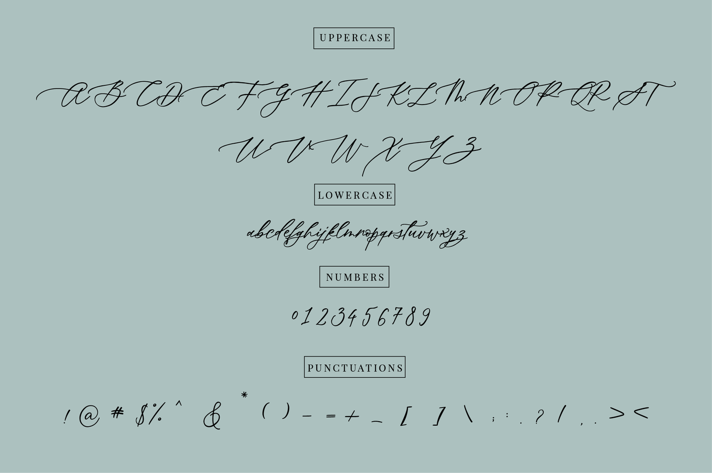 Oh Spring Calligraphy Font By The Ink Affair Thehungryjpeg Com