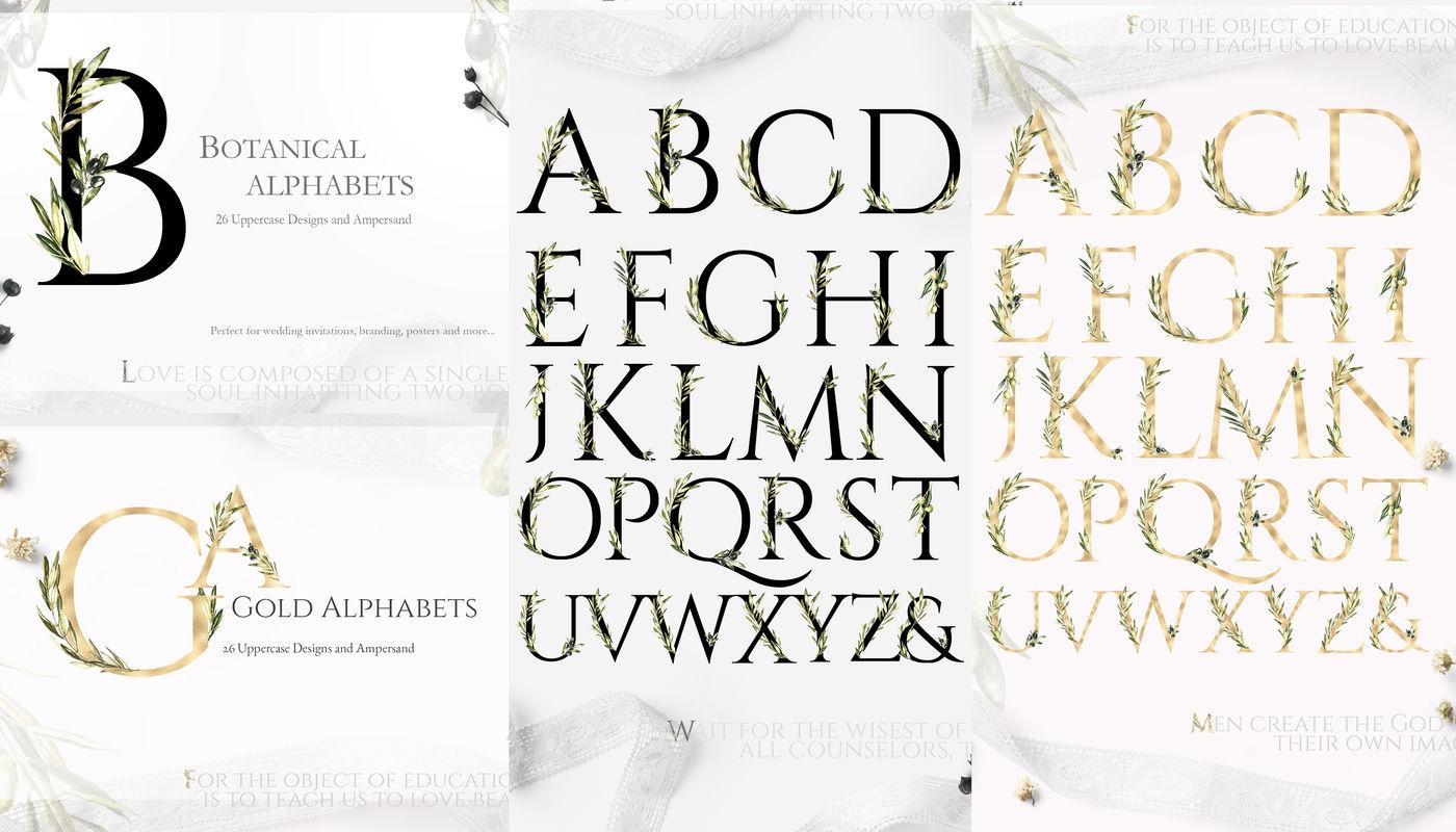 Grace Glory Botanical Alphabet Olive By Catherine Wheel