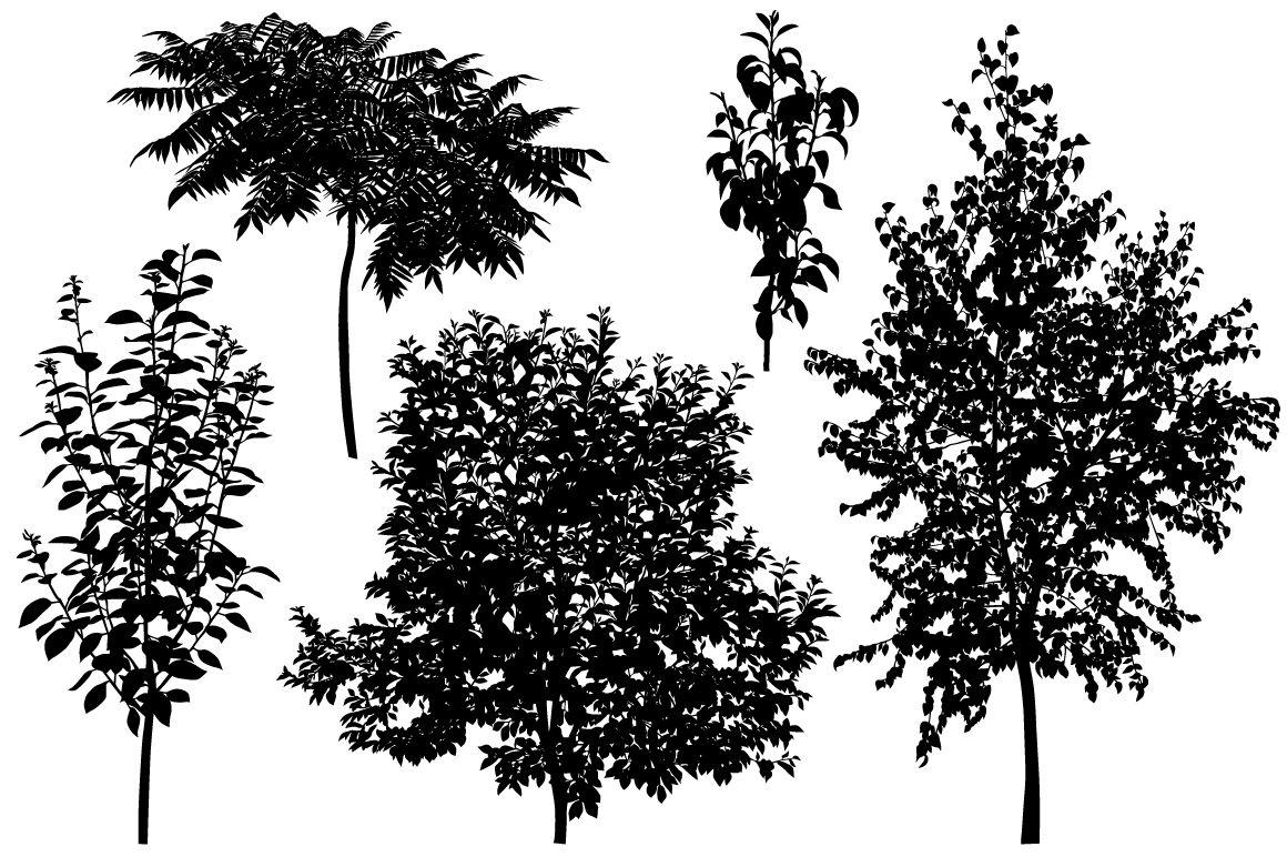 Trees By Viktoria1703 Thehungryjpeg Com