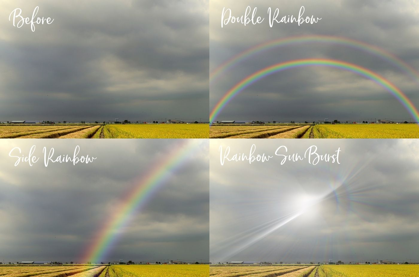 Realistic Rainbow Overlays By Paper Farms Thehungryjpeg Com
