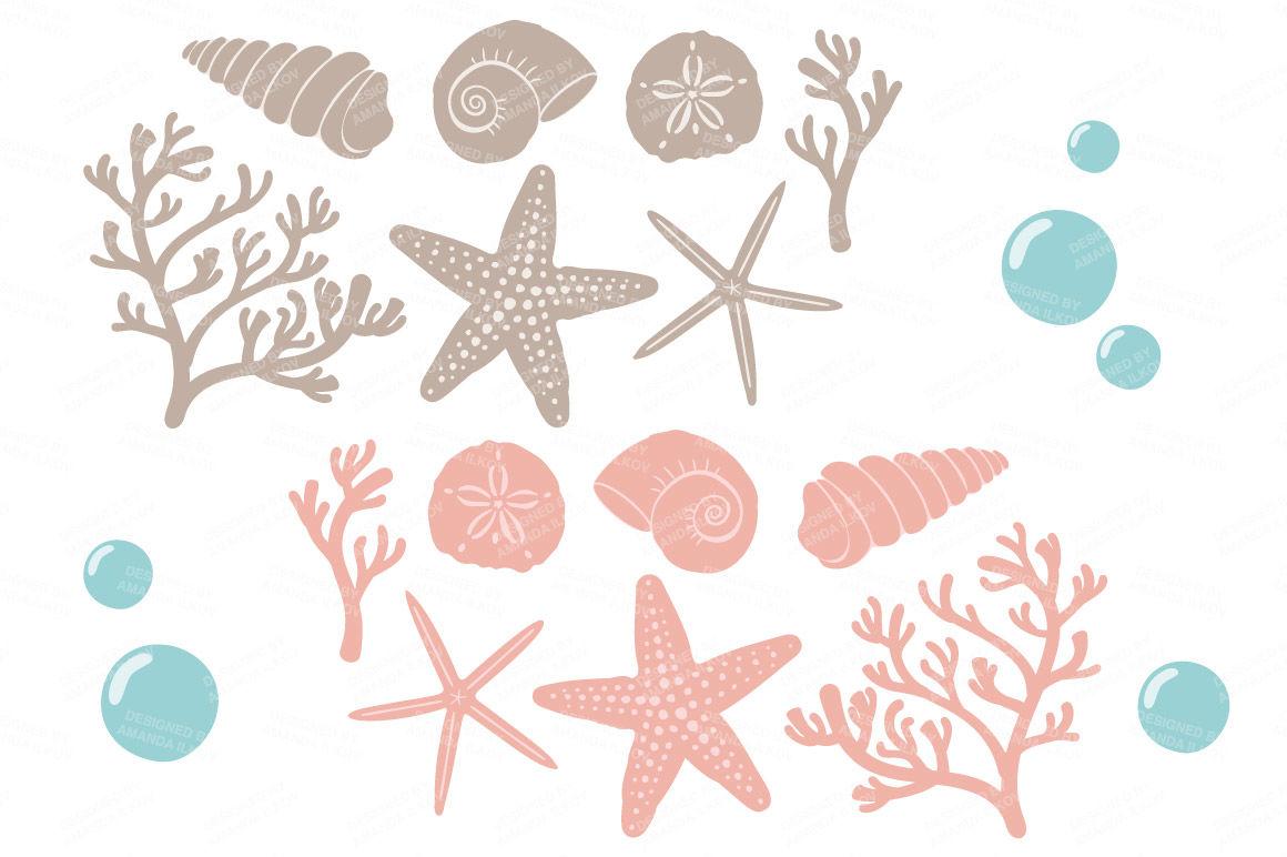 Seashore Shells Coral Clipart In Navy Blush By Amanda Ilkov