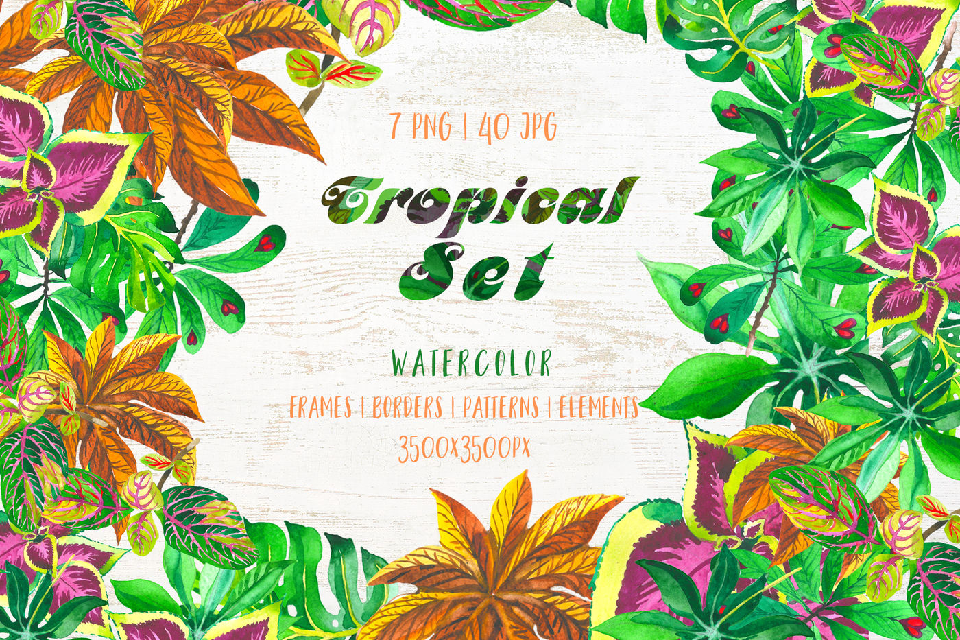 Exotic Tropical Set Png Watercolor By Mystocks Thehungryjpeg Com
