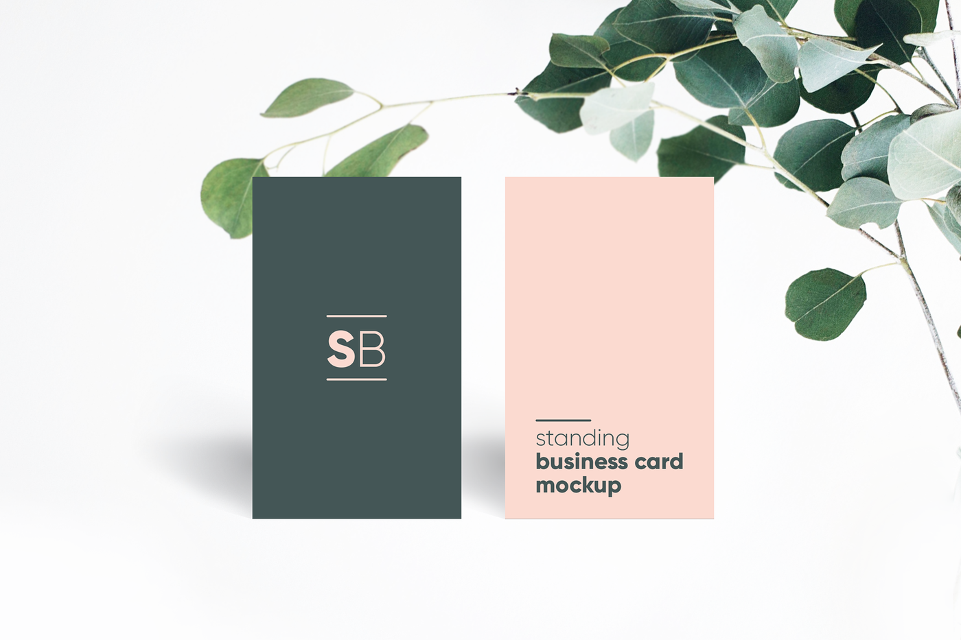 Visiting Card Mockup Psd