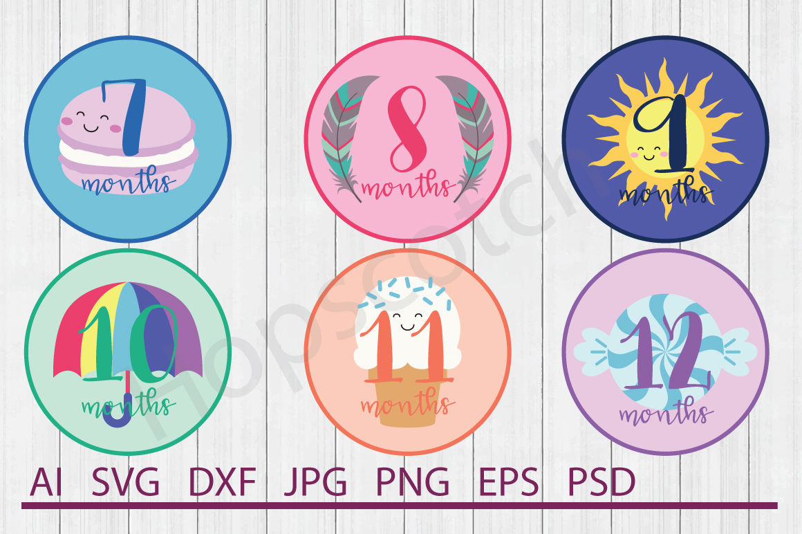 Baby Months Bundle Svg Files Dxf Files Cuttable Files By Hopscotch Designs Thehungryjpeg Com