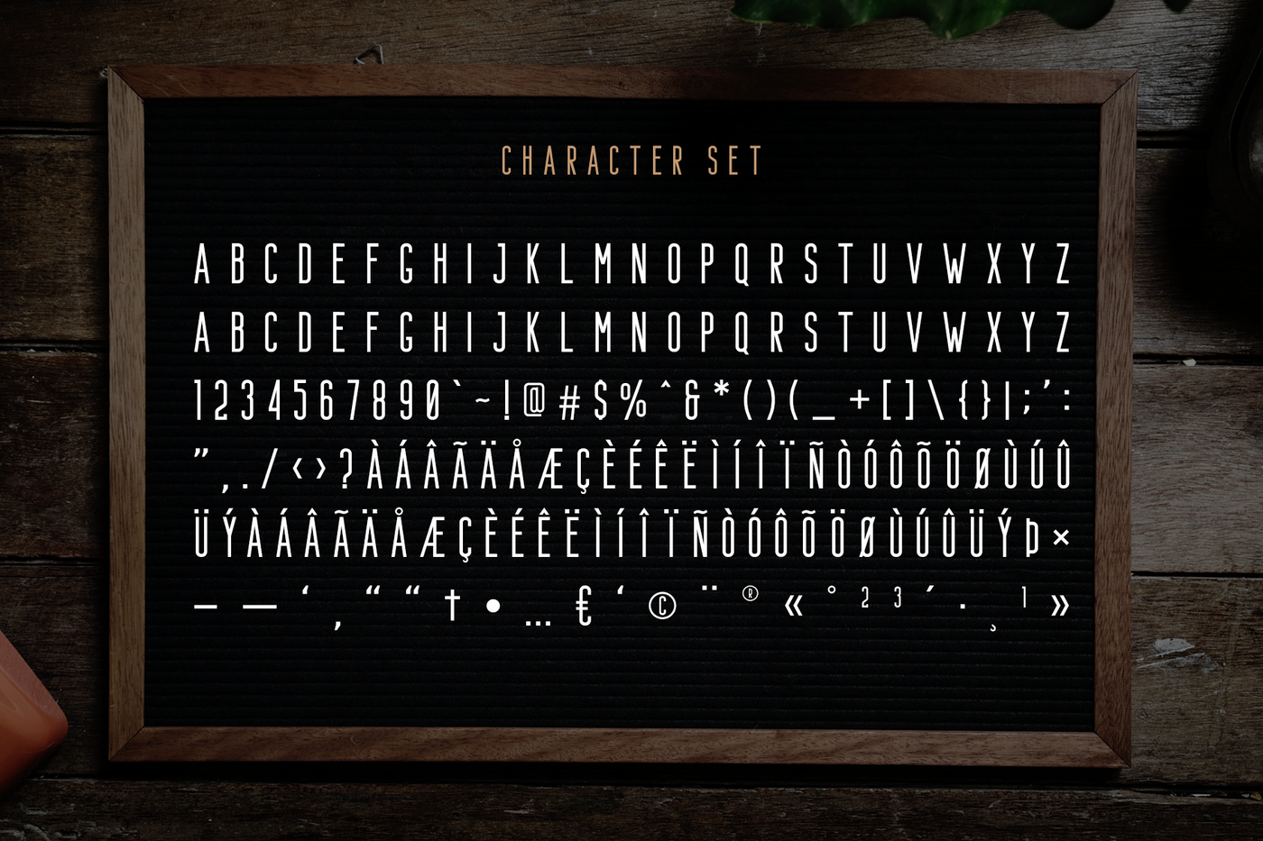 Bafora Svg Font Bonus By Craft Supply Co Thehungryjpeg Com