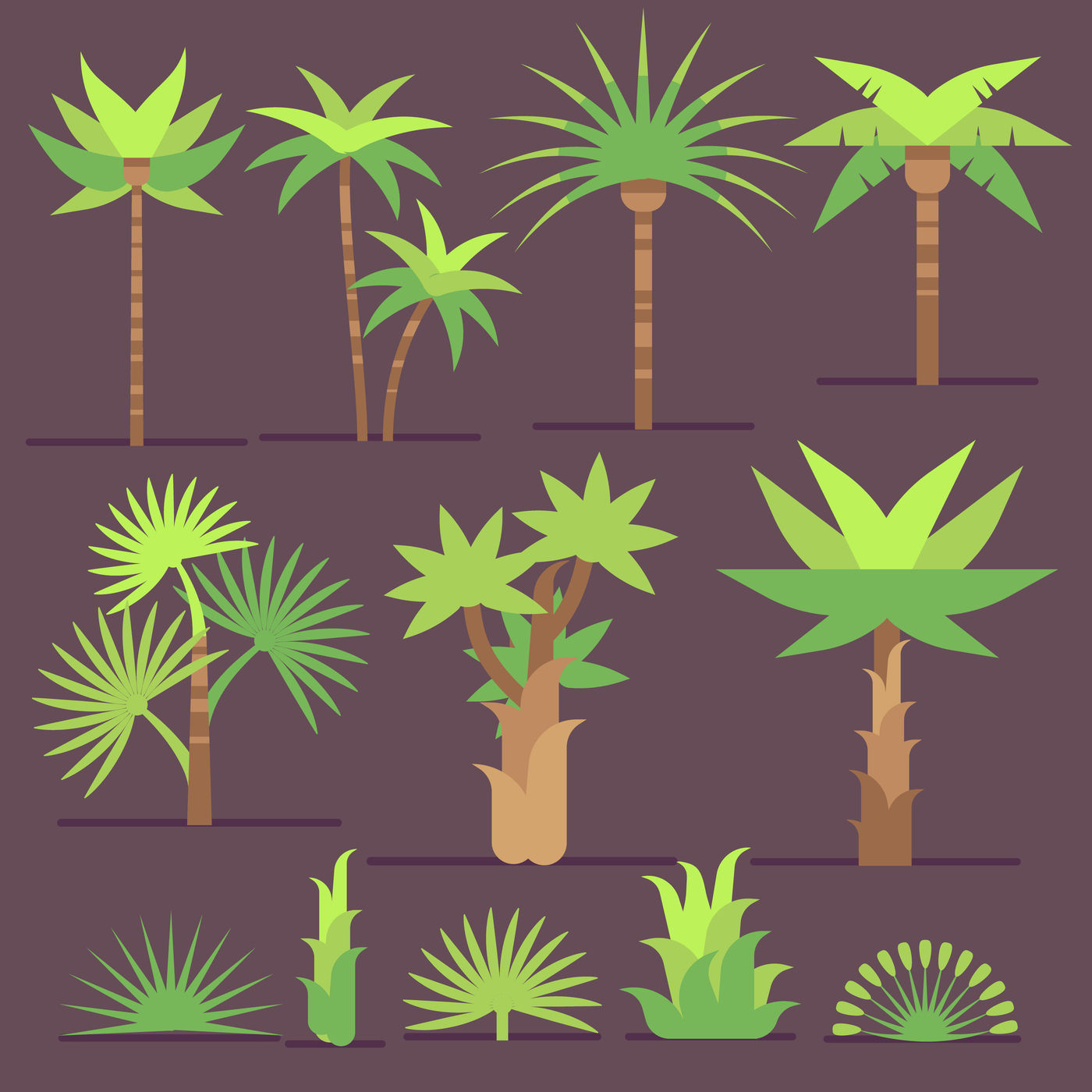 Tropical Exotic Plants And Palm Trees Vector Flat Icons By
