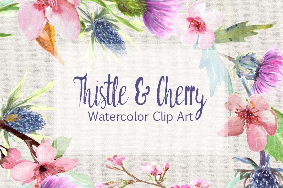 Watercolor Thistle And Cherry Clip Art Set By Tatibordiu