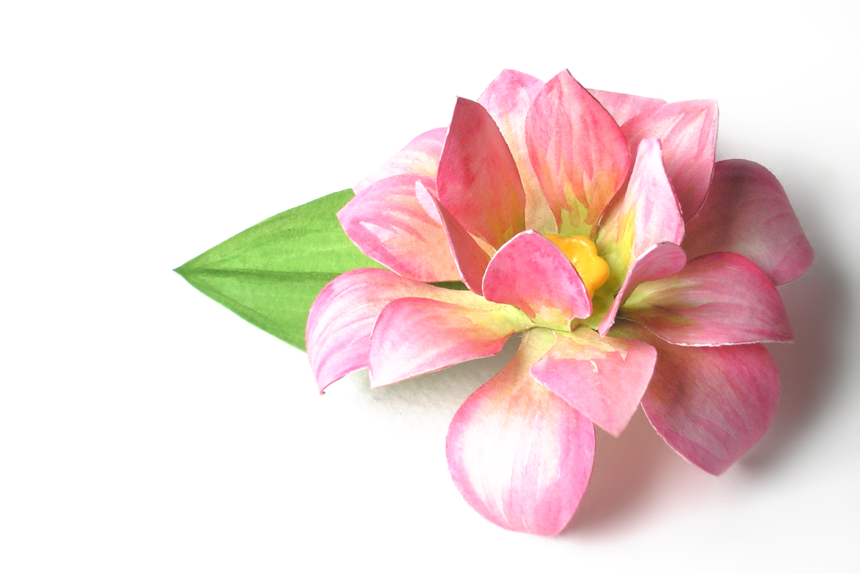 3d Lotus Flower Svg Png Dxf By Risa Rocks It Thehungryjpegcom