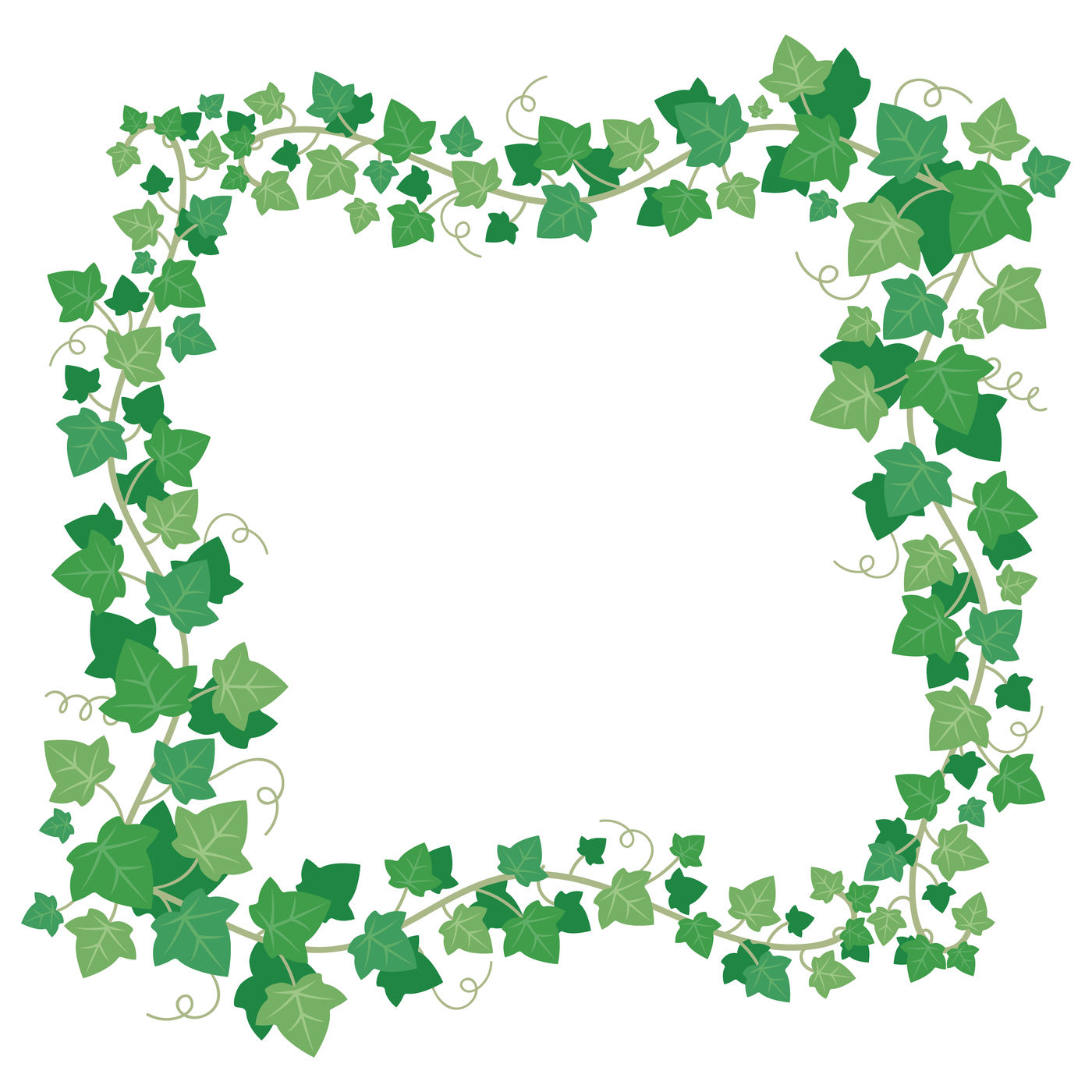 Vine Ivy Green Leaves Frame Climbing Plant Greenery Rectangular