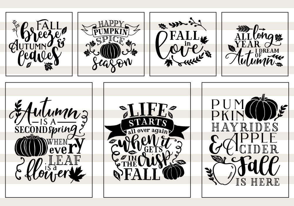 Pumpkin Fall Quote Svg Cut File Bundle By Caluya Design