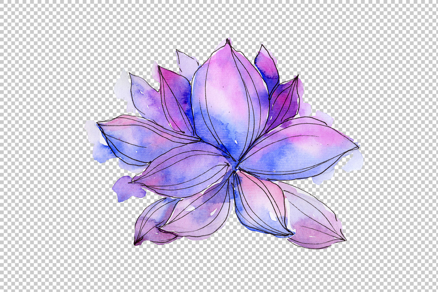 Aquarelle Lotus Flowers Png Set By Mystocks Thehungryjpegcom