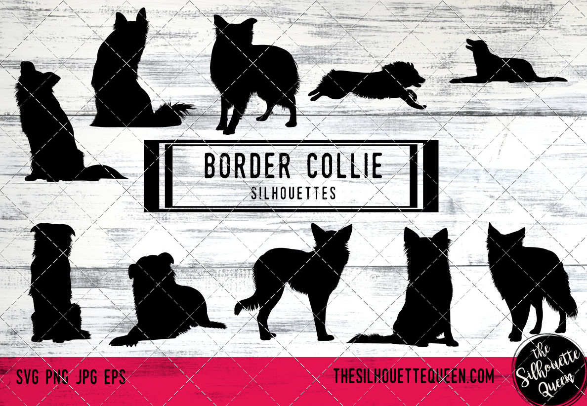 Border Collie Vector Silhouettes By The Silhouette Queen