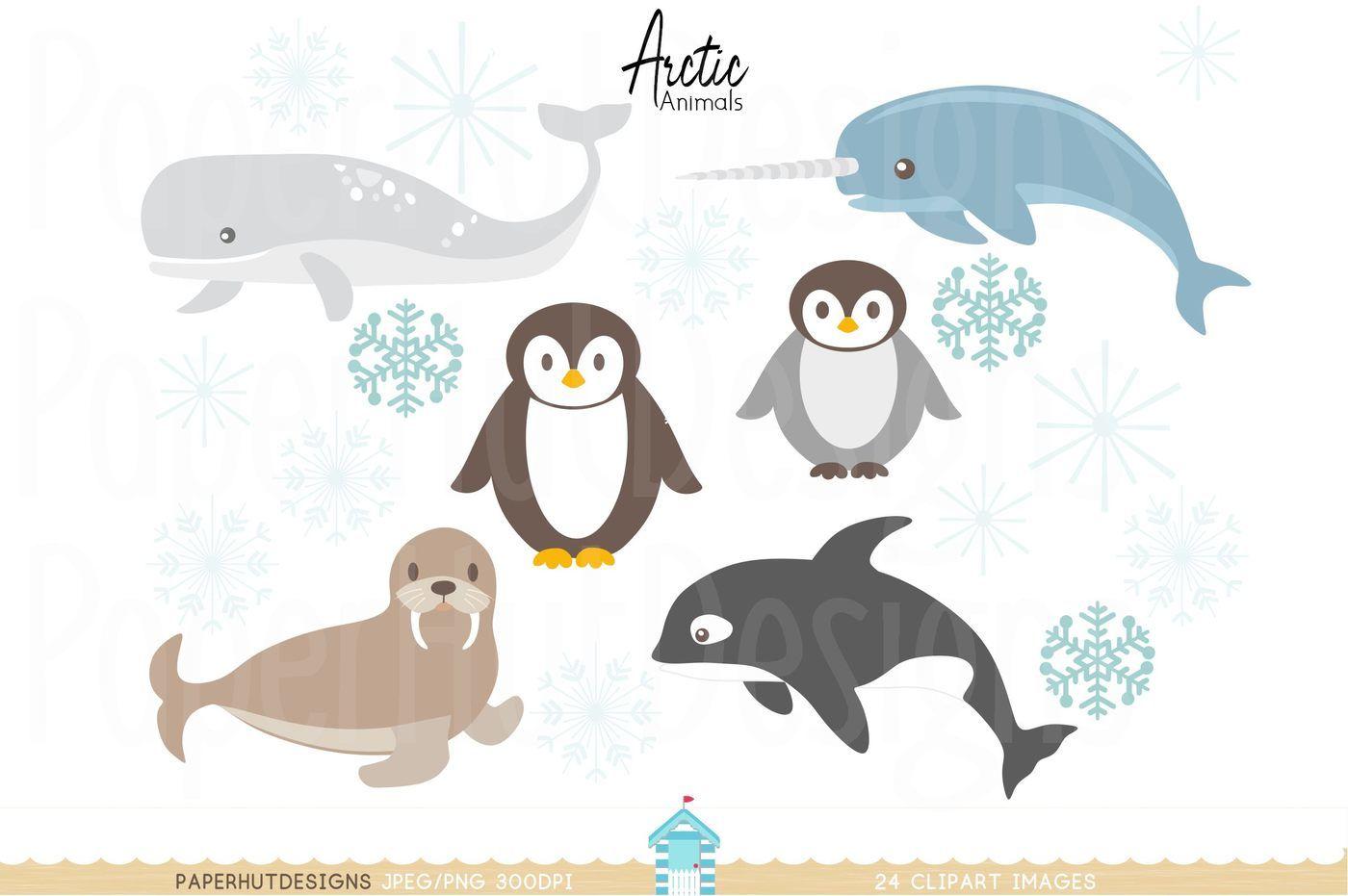Arctic Animals Clipart By PaperHutDesigns | TheHungryJPEG.com