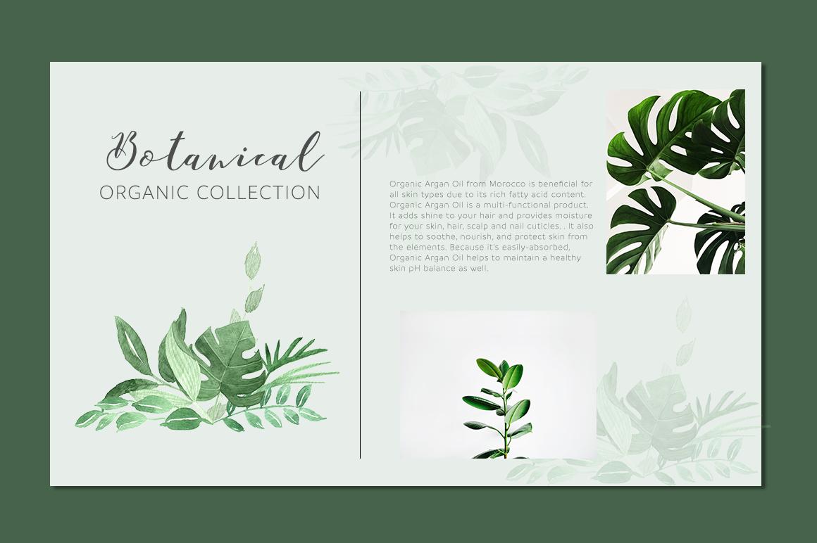 Botanica Watercolor Greenery Leaves By Momo Studio Thehungryjpeg Com