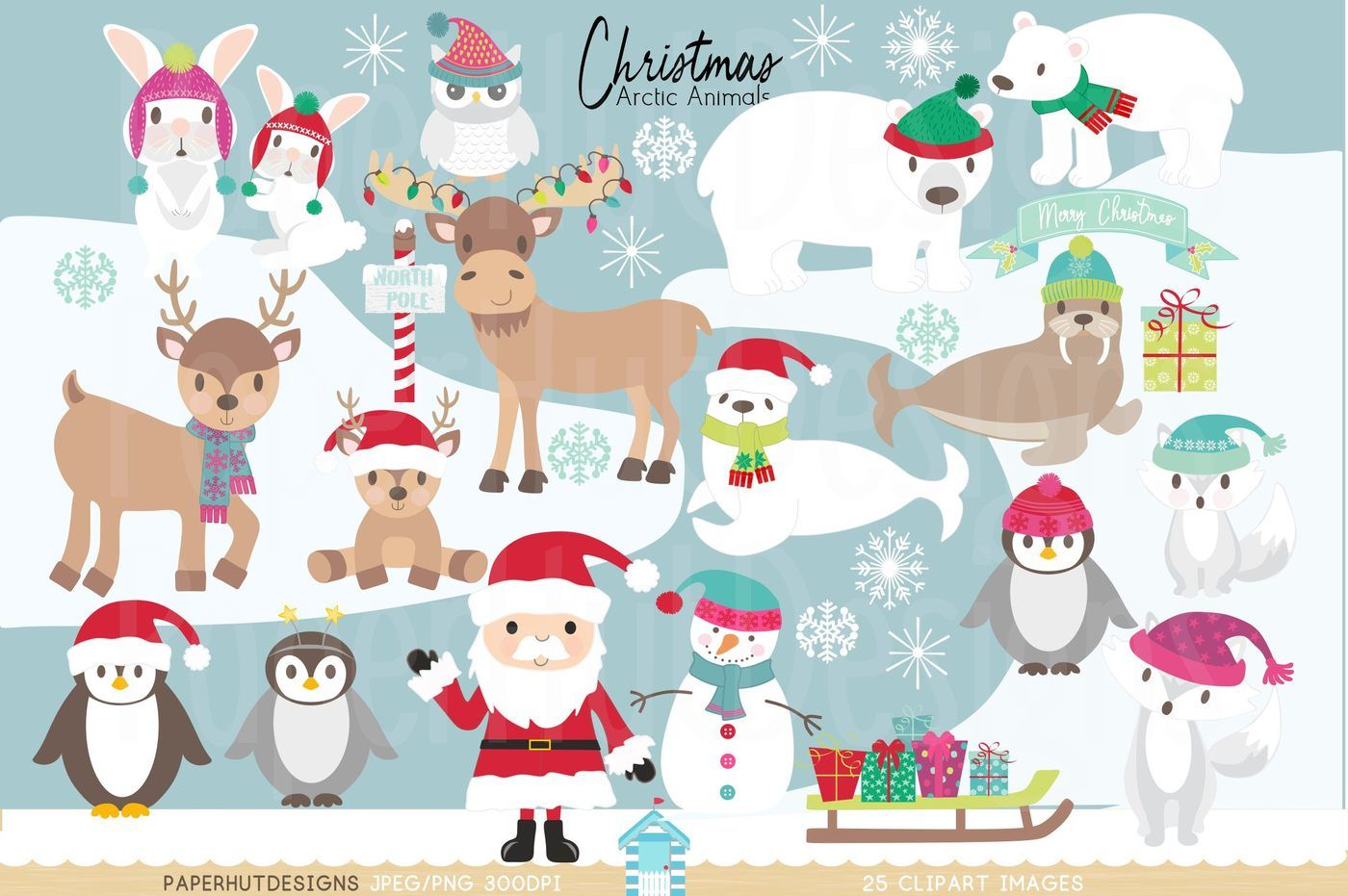 Christmas Arctic Animals Clipart By Paperhutdesigns
