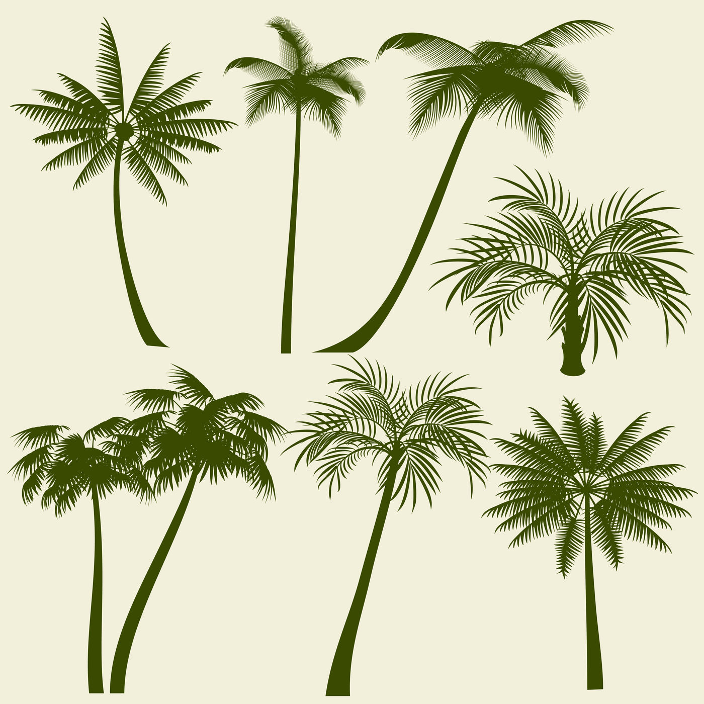 Summer Holiday Palm Tree Vector Silhouettes By Microvector