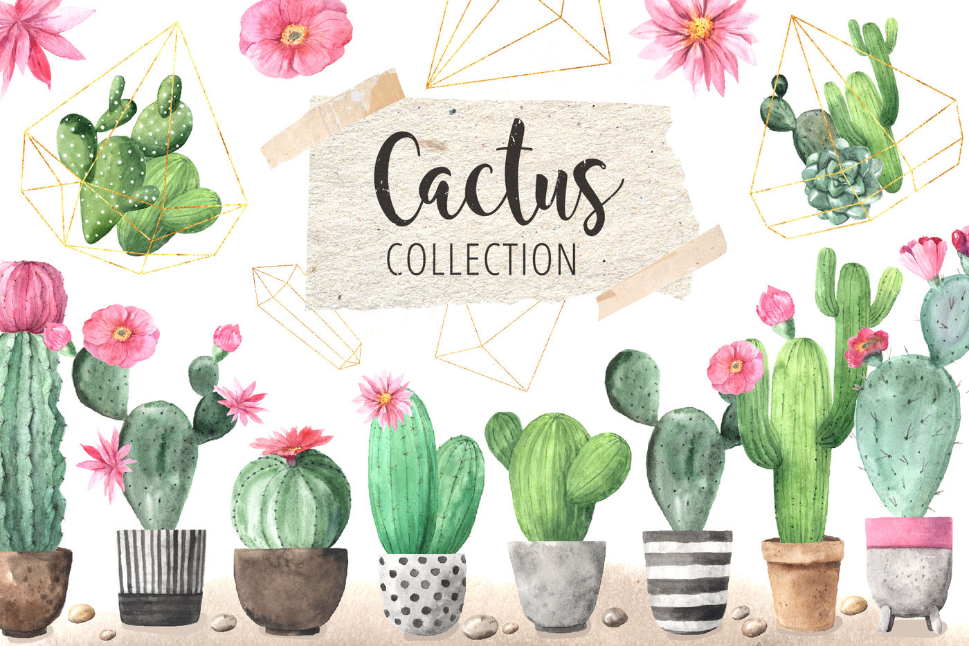 Watercolor Exotic Cactus Collection By Larysa Zabrotskaya