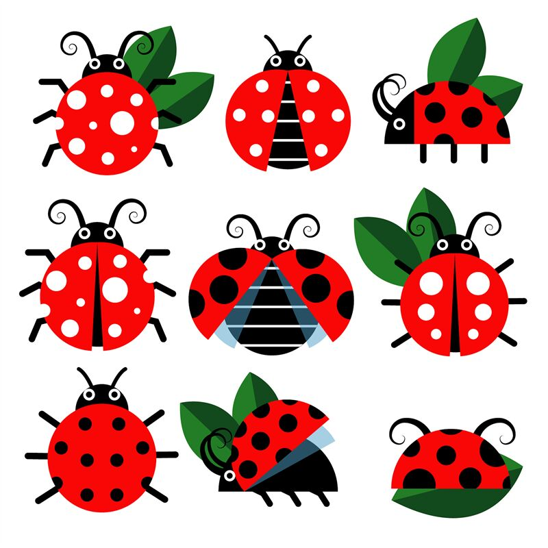 Cute Ladybug Vector Icons Cartoon Style Bugs And Leaves By