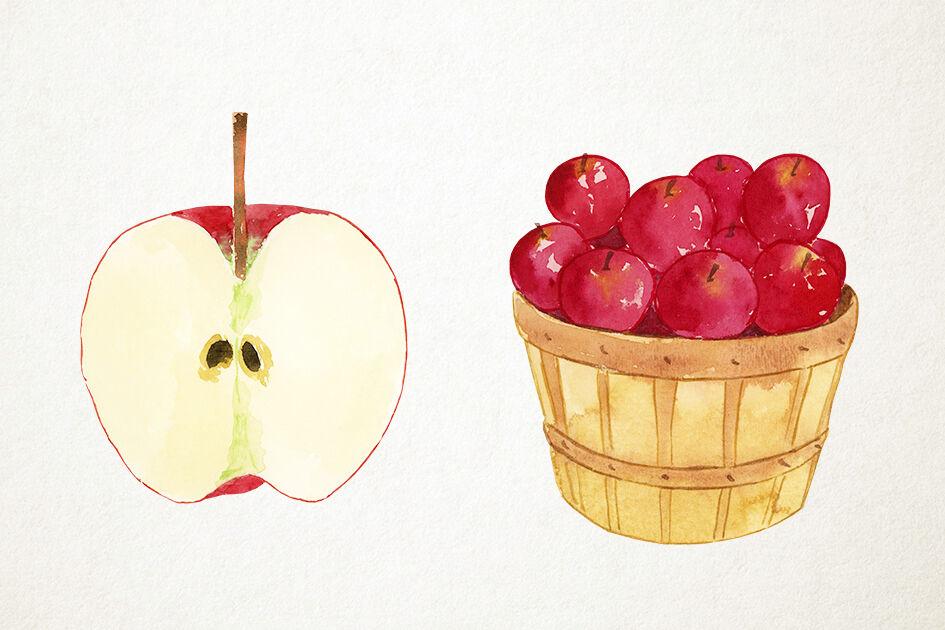 Apple-Apples-Clipart-Set kommerzielle Nutzung sofortiger | Etsy