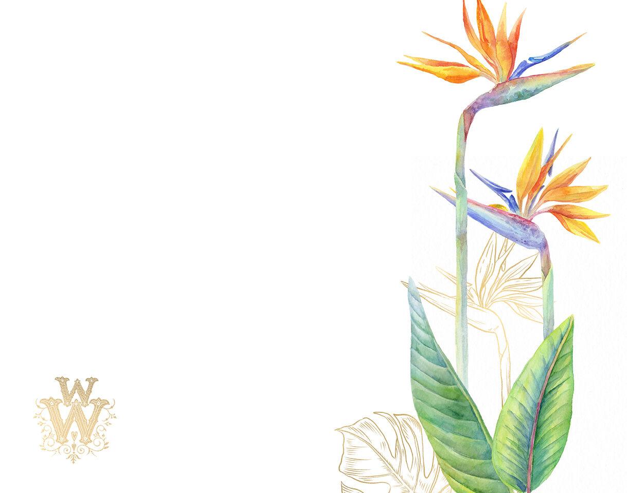 Watercolor tropical clip art, floral border clipart ...